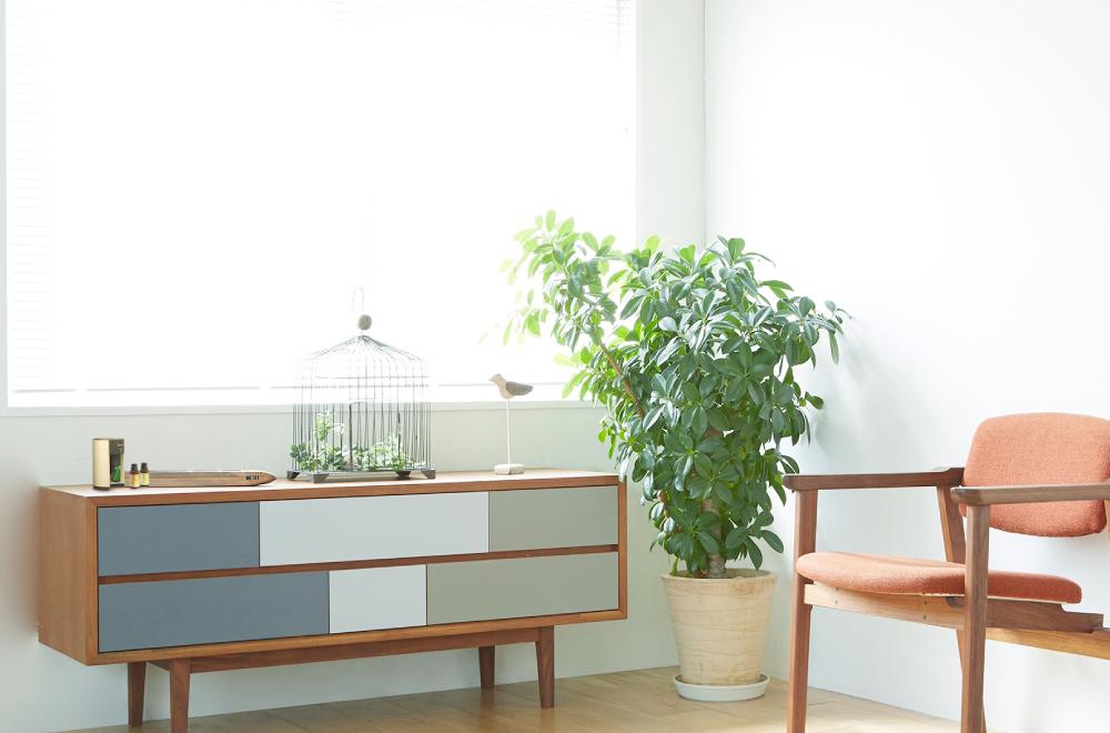 アロマオイル、エッセンシャルオイルを使用した香りの空間デザイン、アロマテラピースクールならaromato(アロマト)|アロマ通販